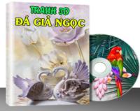 G016 – TRANH 3D & ĐÁ GIẢ NGỌC VOL.14 (519 MẪU)